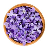 https://www.s72gin.com/wp-content/uploads/2018/10/violet-flower.jpg